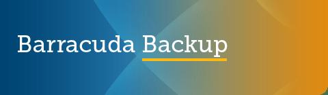 Barracuda Backup 6.5.04 GA リリース のページ写真 1