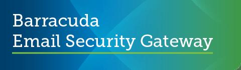 バラクーダがガートナーの2019年9月のPeer InsightsでメールセキュリティのCustomers' Choiceとして評価【メールセキュリティ】 のページ写真 6
