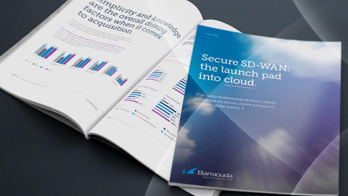 レポート: セキュアなSD-WAN(Software Defined Wide Area Network): クラウドへの出発点 のページ写真 5